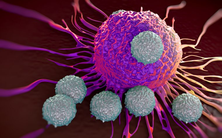 Promising immunotherapy CAR-T