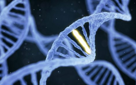 Dozens of New Genes with Resistance to Cancer Immunotherapy Discovered